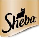 Sheba (Шеба) изысканные влажные корма для кошек